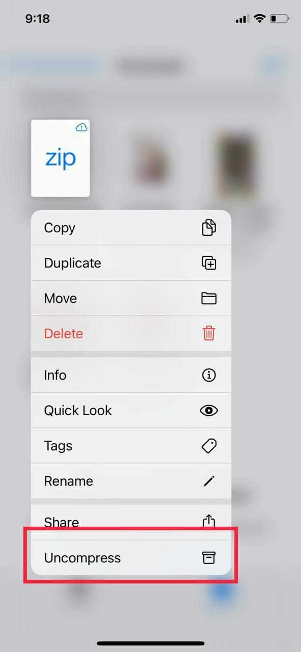 Uncompress the Zip file
